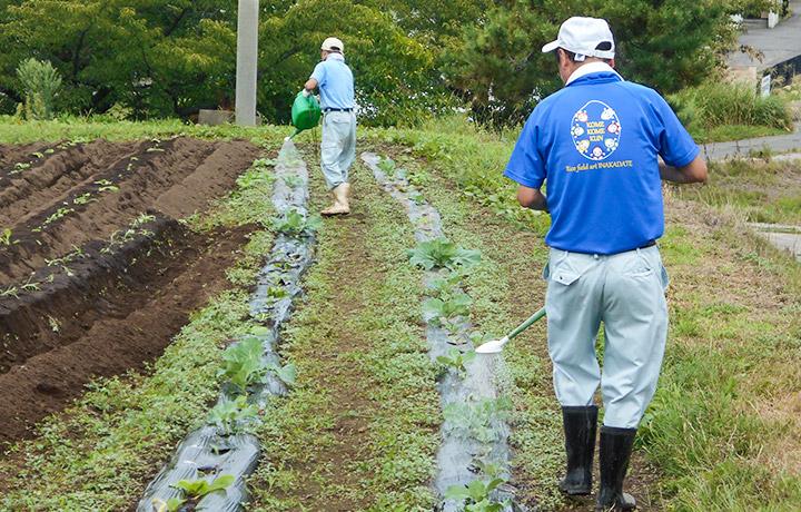 農園芸作業